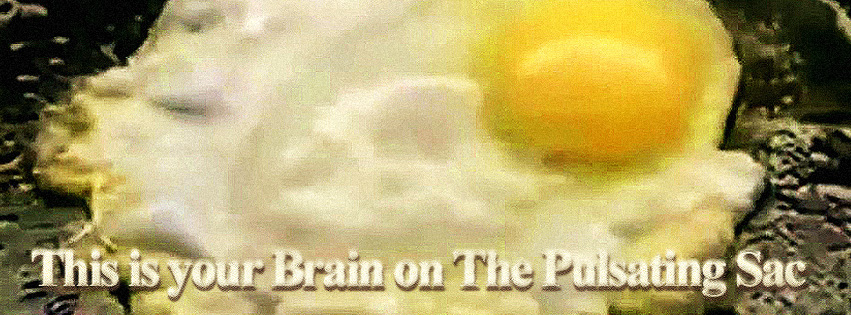 Brain-on-The-Pulsating-Sac-FB-Cover
